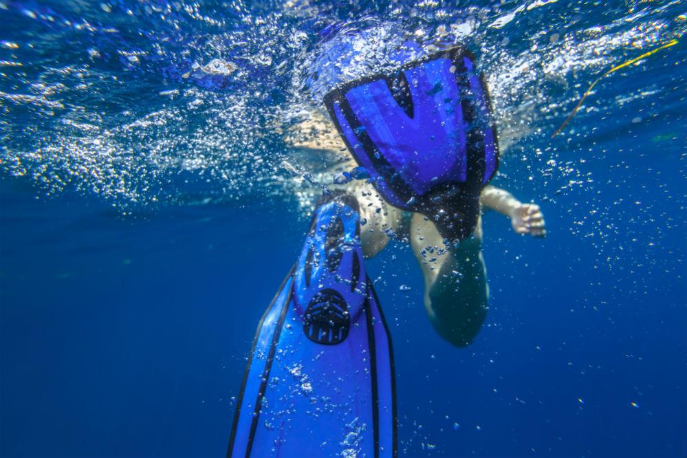Seavenger Torpedo Swim Fins Review